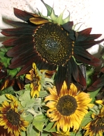 The Smaller Sunflowers Should Be Rustic Sunflower Arrangement